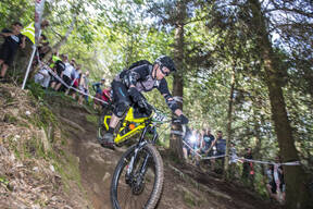 Photo of Simon PALMER (gvet) at Grogley Woods