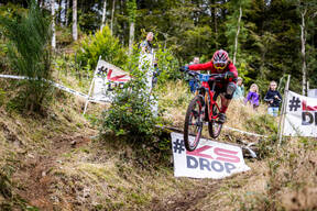 Photo of David BENTLEY (gvet) at Kirroughtree