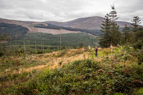 Photo of untagged at Kirroughtree