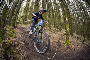 Photo of Eilo BEESLEY at Kirroughtree
