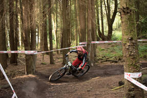 Photo of Will SOFFE at Grogley Woods