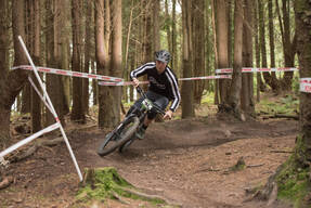 Photo of Stephen WILLS at Grogley Woods