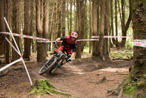 Photo of Lawrence JONES at Grogley Woods