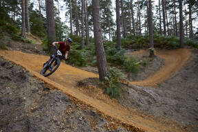 Photo of Kirsty TWELFTREE at Swinley Forest
