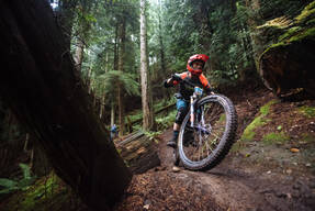 Photo of an untagged rider at Bellingham, WA