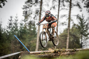 Photo of Dave INGLEBY at Ae Forest
