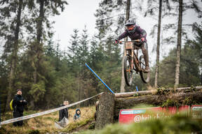 Photo of Stacey FISHER at Ae Forest