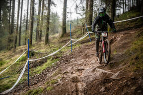 Photo of Matt RUSHTON at Ae Forest