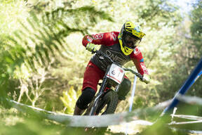 Photo of Roger VIEIRA at Ae Forest