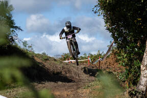 Photo of Perry MUSSELL at Penshurst