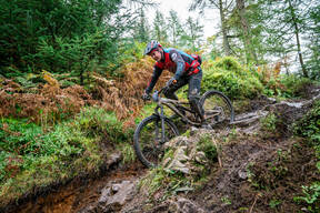 Photo of Tim DIXON at Grizedale