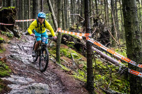 Photo of Daniel HATTON at Grizedale Forest