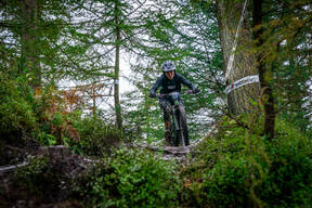 Photo of Rose TEMPEST at Grizedale Forest