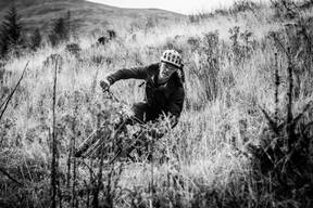 Photo of Neil YOUNG (svet) at Fort William