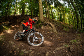Photo of Ben LLEWELLYN at Forest of Dean