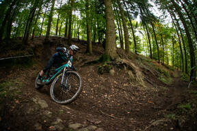 Photo of David TIPPINS at Forest of Dean