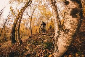 Photo of Andrew DRISCOLL at Plattekill, NY