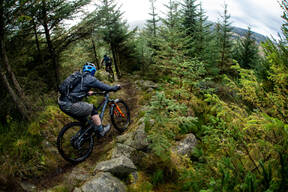 Photo of Greg FRANCIS at Kielder Forest
