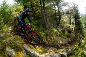 Photo of Lewis SEYMOUR at Kielder Forest