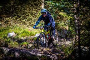 Photo of Ian TATE (vet) at Kielder Forest