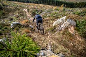 Photo of untagged at Kielder Forest