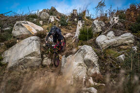 Photo of David MCCUTCHEON at Kielder Forest