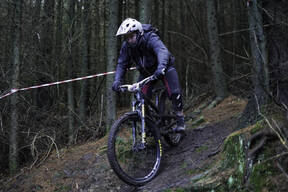 Photo of Stephen MCNEILL (vet) at Hamsterley