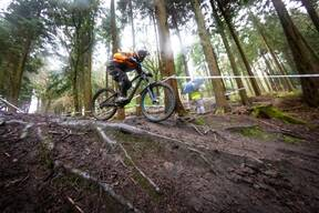 Photo of Nigel JOHN at Forest of Dean