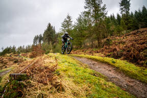 Photo of Darren PETTY at Ae Forest
