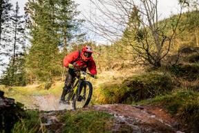 Photo of Emil BACHVAROV at Ae Forest