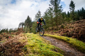 Photo of Mark CHEETHAM at Ae Forest