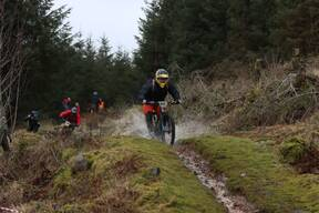 Photo of Robin GRAY at Ae Forest
