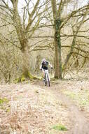 Photo of untagged at Birchall Woods