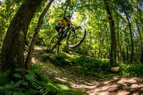 Photo of Andrew SAMPSELL at Glen Park