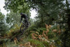 Photo of Ieuan JONES at Graythwaite