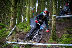 Photo of Dan POMFRET at Graythwaite