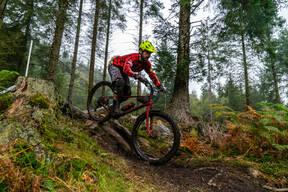 Photo of Matt LAKIN at Graythwaite