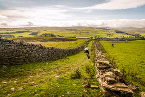Photo of untagged at Weardale