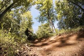 Photo of Dan HOPMANS at Powder Ridge, CT