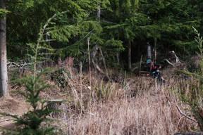 Photo of Will STRALKA at Galbraith Mountain