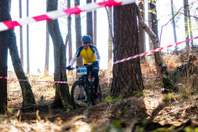 Photo of Dai GITTINS at New Forest