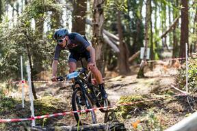 Photo of Will CRUDGINGTON at New Forest