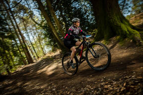 Photo of Deborah SMITH at New Forest