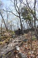 Photo of Isaac WARING at Diamond Hill