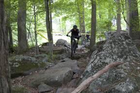 Photo of Zachary ROMAN at Spring Mountain