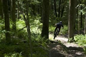 Photo of Willem COOPER at Glen Park
