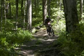 Photo of Vincent PELLICANE at Glen Park