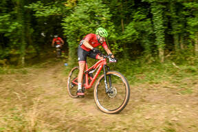 Photo of Anthony ASHFORD at Stourton Woods