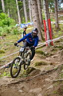 Photo of Hannes ALBER at Val di Sole