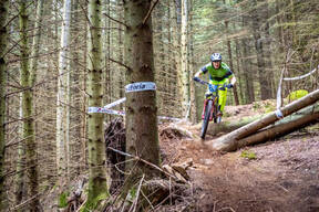 Photo of Mike WINDSOR (mas) at Kirroughtree Forest